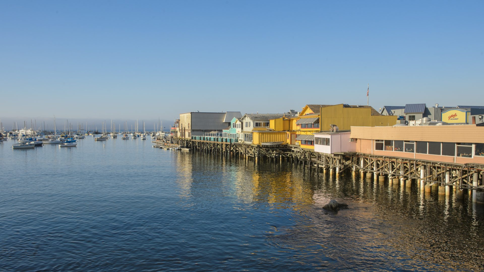 Monterey Food And Wine Festival